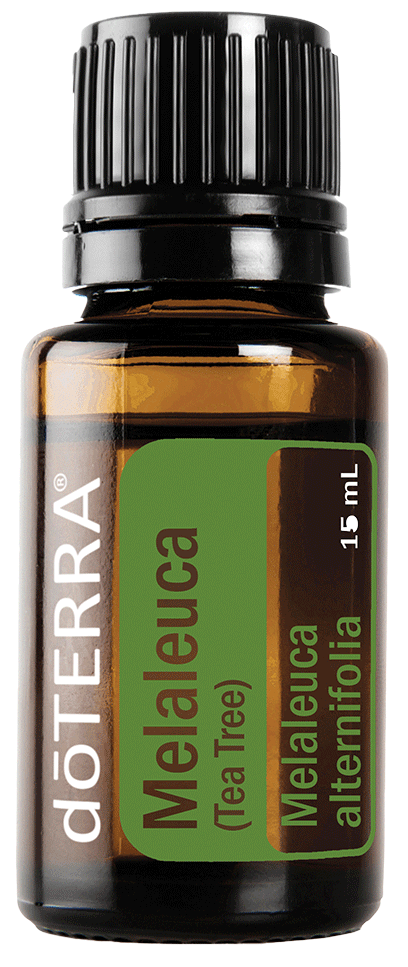 melaleuca tea tree 15ml